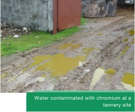 Water contaminated with chromium at a tannery site